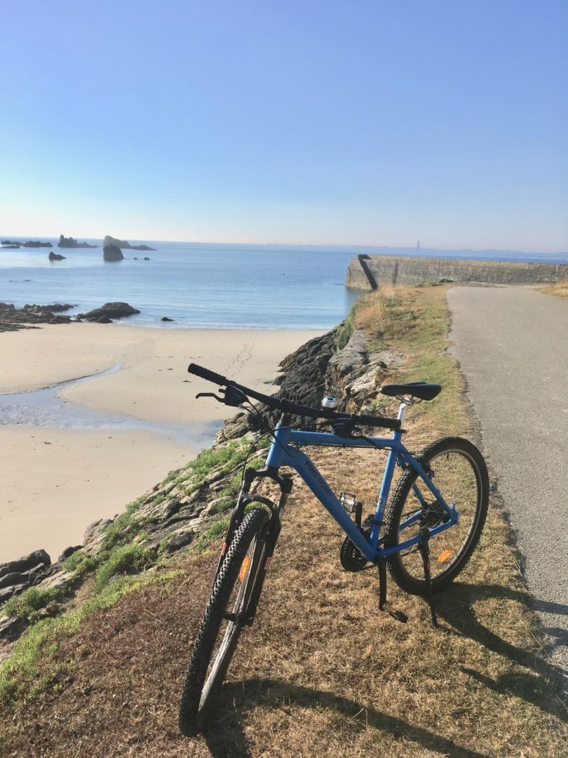 VTT - Location vélos